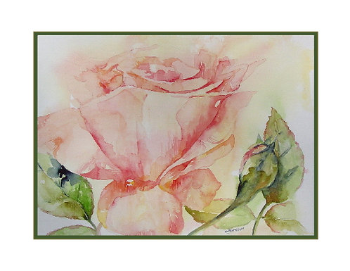 Pink Rose Watercolor Note Cards