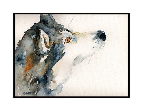 Look of a Siberian Husky Watercolor Note Cards