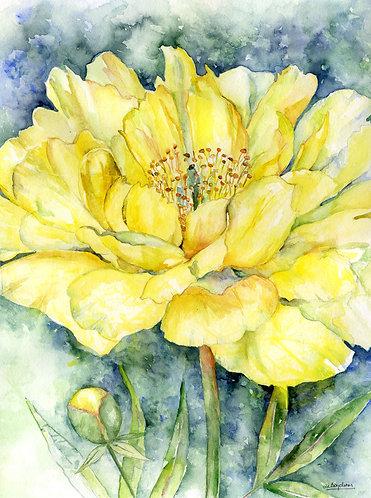 Yellow Peony Watercolor Original Painting