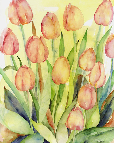 Tulip Explosion Original Watercolor Painting
