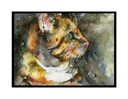 Cat Got My Eye Tiger Cat Watercolor Note Cards