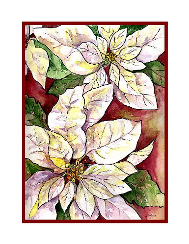 White Poinsettias Watercolor and Ink Note Cards
