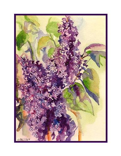 Purple Lilacs Watercolor Cards