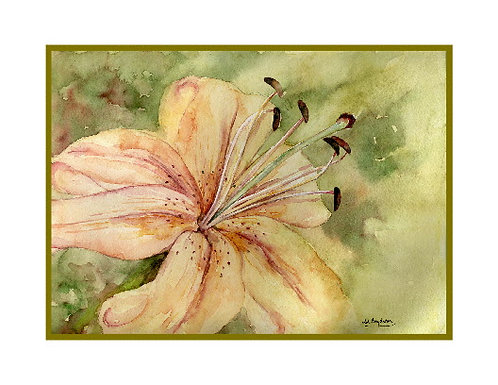 Lily Watercolor Note Cards