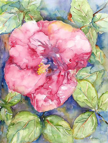 Watercolor Original Red Hibiscus Painting