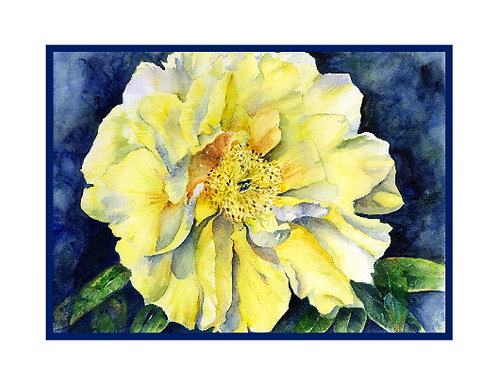 Yellow Peony Watercolor Note Cards