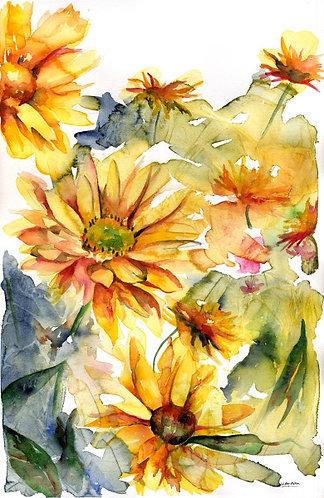 Helianthus Original Watercolor Painting
