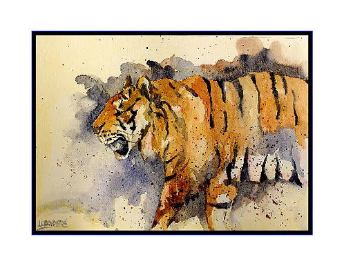 Tiger Watercolor Note Cards