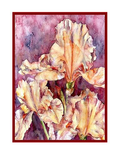 Orange Irises Watercolor Note Cards