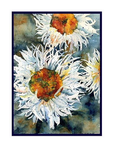 Shasta Daisy Watercolor Note Cards