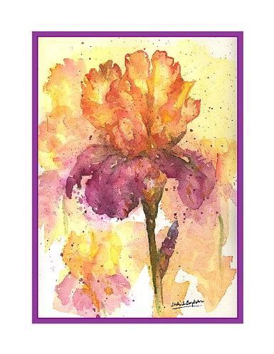 Iris Garden Watercolor Note Cards