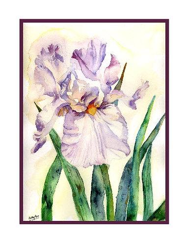 Lavender Iris Watercolor Note Cards