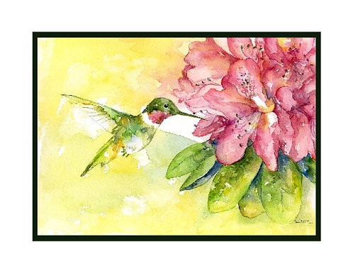 Ruby- Throated Hummingbird Watercolor Note Cards