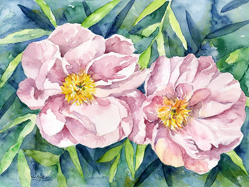Watercolor Peony Duet Original Painting