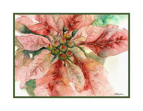 One Poinsettia Watercolor Note Cards