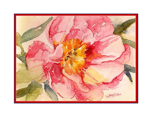 Watercolor A Peony Note Cards