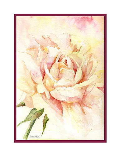 Muted Rose Watercolor Note Cards