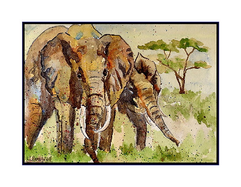 African Elephants Watercolor Note Cards