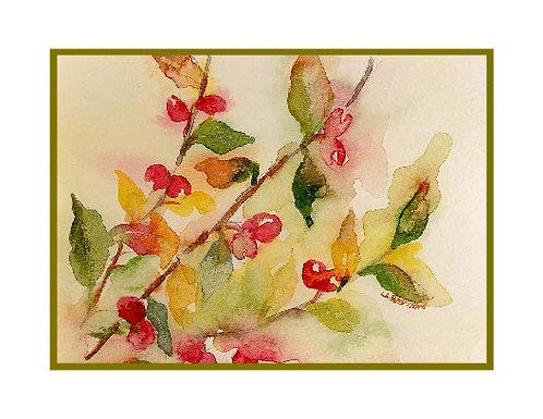 Watercolor Berries Cards
