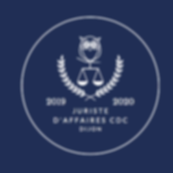 nouveau logo jurivision.png