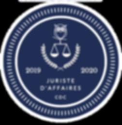logo jurivision_edited.png