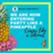 party like a pineapple poster 2020.png