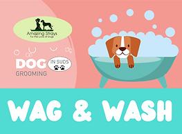 WAG & WASH_Website.png
