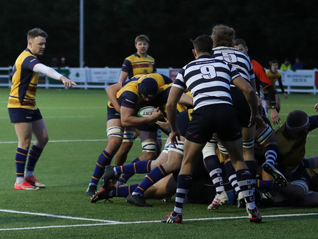 Cobham push Havant all the way in narrow defeat