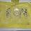 Thumbnail: Yellow Adult Poncho