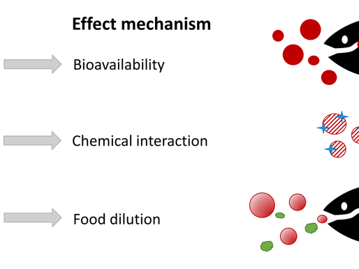 New papers on plastic ingestion and properties