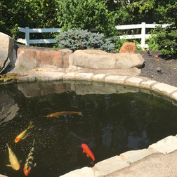 Rock Speakers for Fish Pond