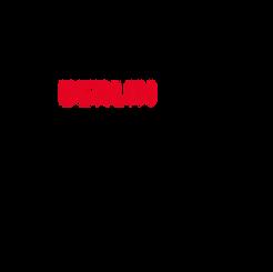 Berlin Partner.png