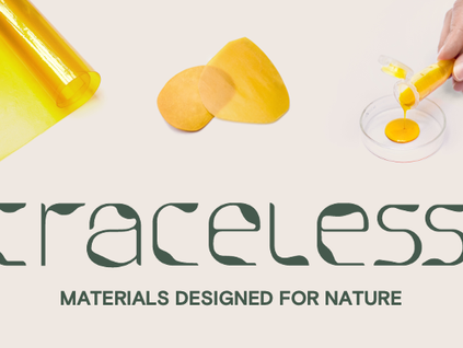 #FounderFriday: traceless | A future without plastic pollution