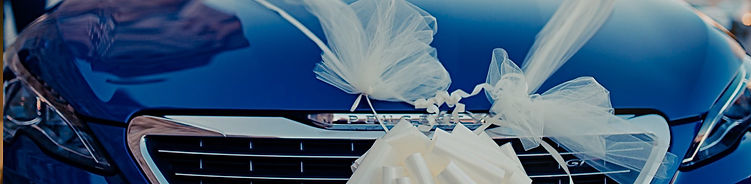 bg_directory-hero-wedding-transportation