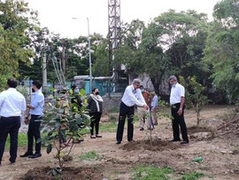 plantation-drive-nisg-hyderabad-3.jpg