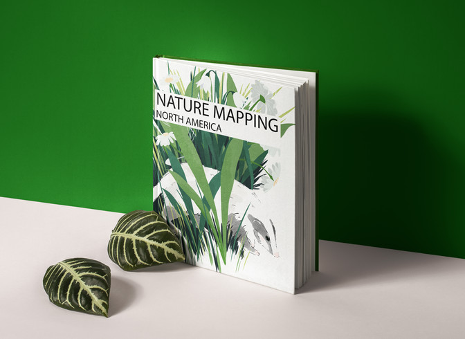 Nature Mapping.jpg
