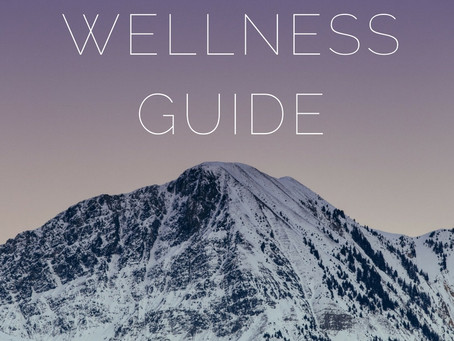 Flow Acupuncture's annual WINTER WELLNESS GUIDE is here!