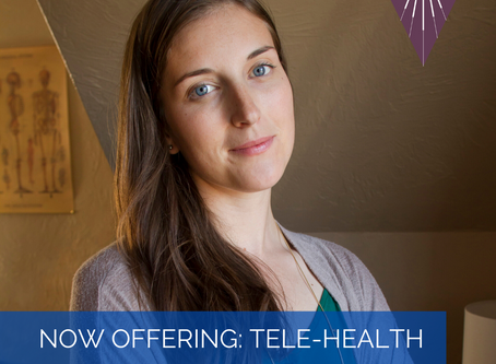 Now offering TELEMEDICINE VISITS!