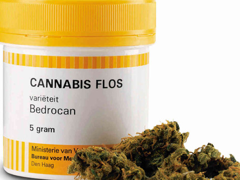 Cannabis trial to help epileptic Qld kids