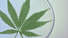 What are the benefits of medicinal cannabis?