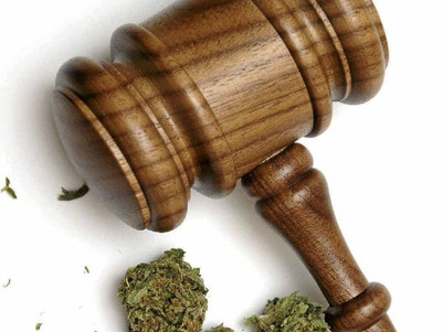 Pot penalties could match ice