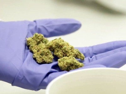 Coronavirus: Medical cannabis access eased amid lockdown in UK