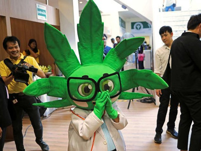 Medical Cannabis: Thailand leads worldwide healthcare promotion