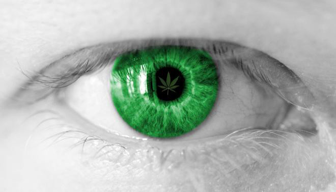 cannabis-eyes.jpg