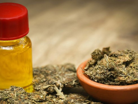 WA doctor says 'medicinal cannabis could help sick children at PMH next year'