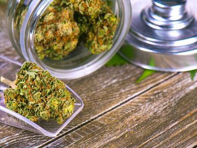 Legal cannabis a good step, but drug war hangover remains