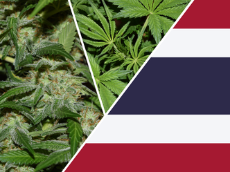 Thailand: Seized cannabis handed over for medical research