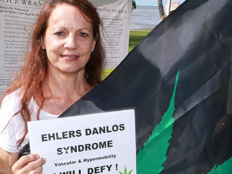 Far North fight for medicinal cannabis far from over