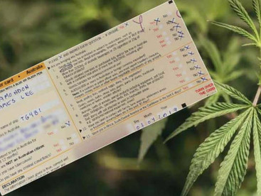 The 'Thailand twist': How a WA man believes he can secure legal medical cannabis year-round