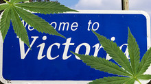 The case for Victoria to legalise cannabis